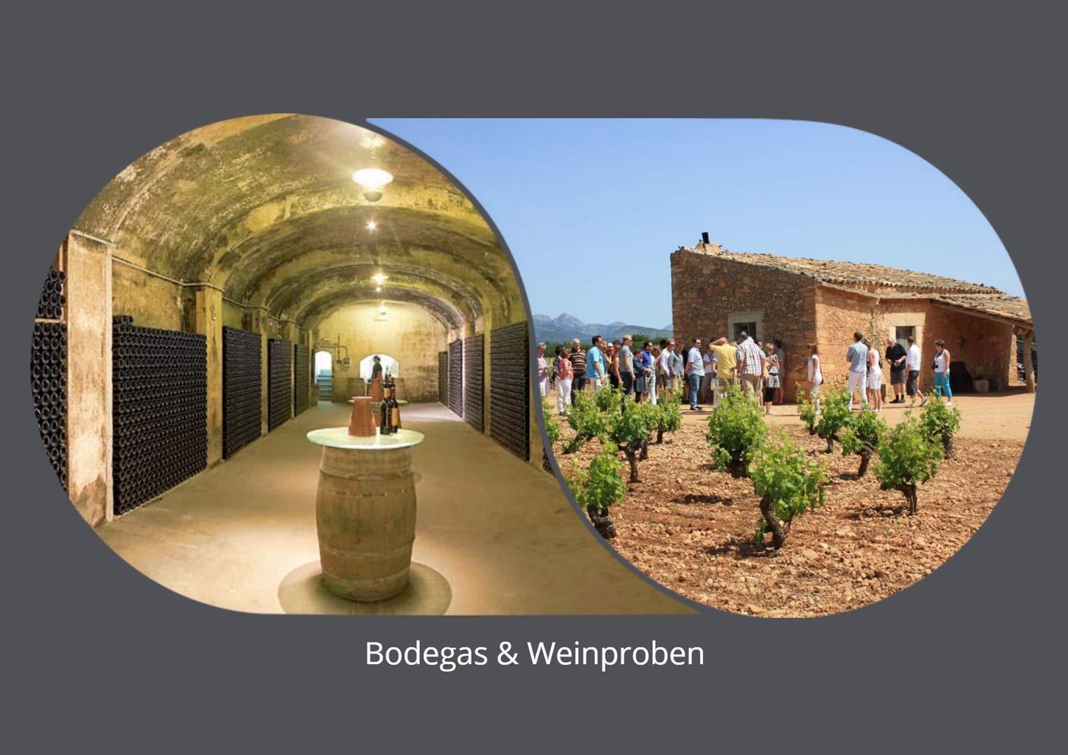 Bodegas und Weinproben